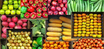 Trial puts healthy supermarkets to the test